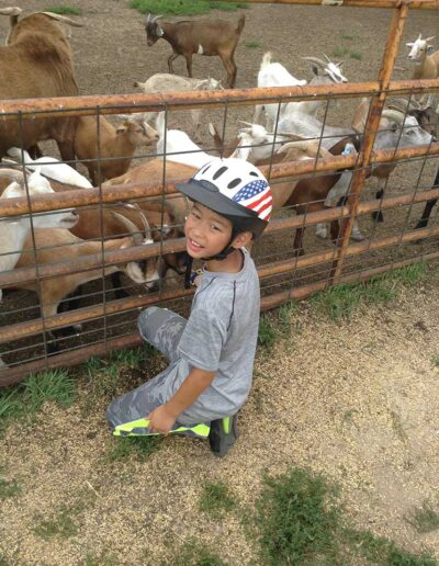 Boy petting goats