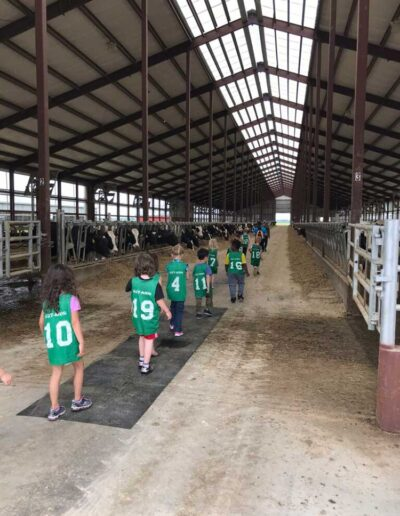 Kids touring a barn with cows