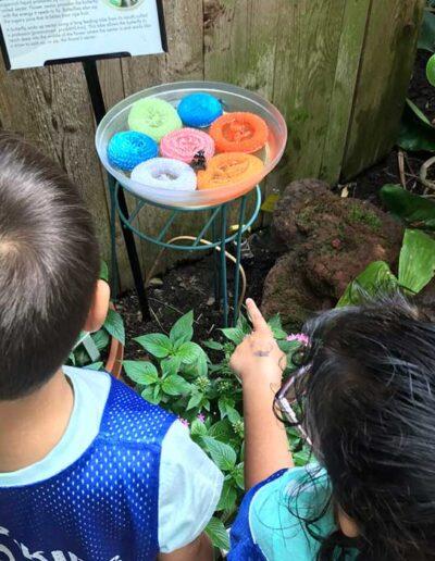 SAC Jr kids watching Butterflies at Olbrich Gardens Blooming Butterflies event