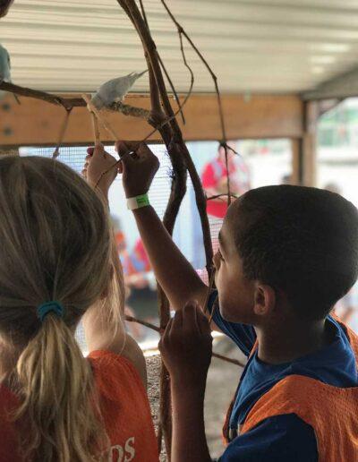 Kids feeding a little bird