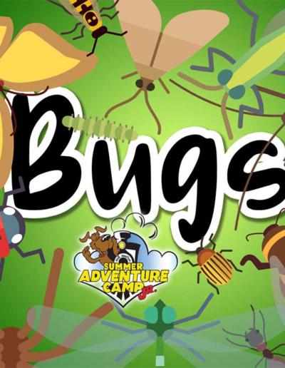 SAC Jr Weekly Theme Bugs