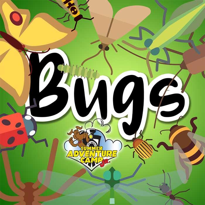 Week 4: Bugs