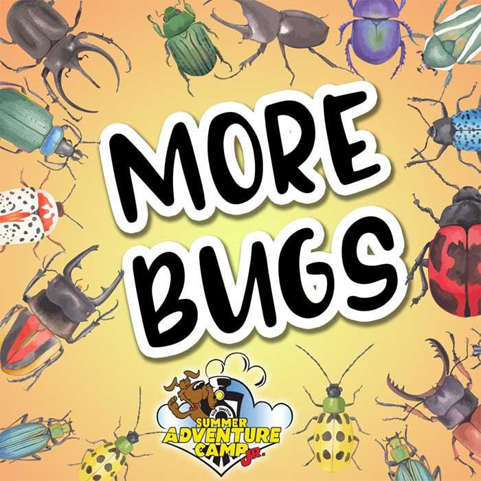 Week 4: More Bugs