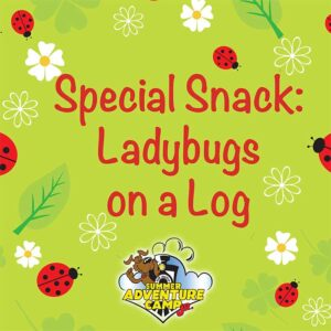 Special Snake: Ladybugs on a Log