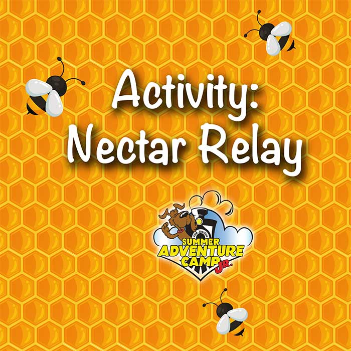Activity: Nectar Relay